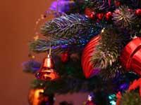 Jul i Dalsland
